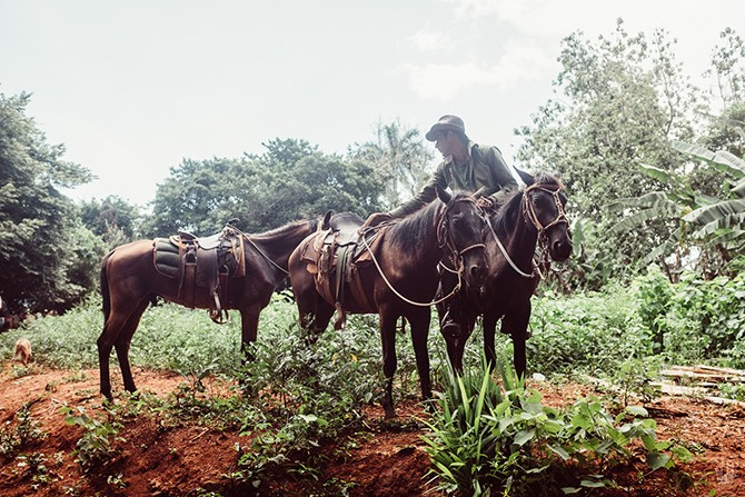 Valentin-Astier-Cuba-Vinales-Countryside-Horses-Cuban-Nature-Fujifilm