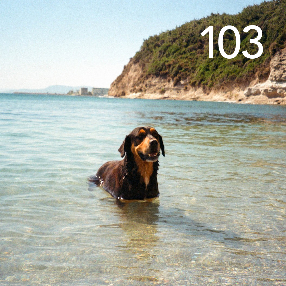 playlist 103