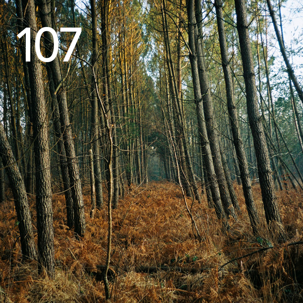 playlist 107